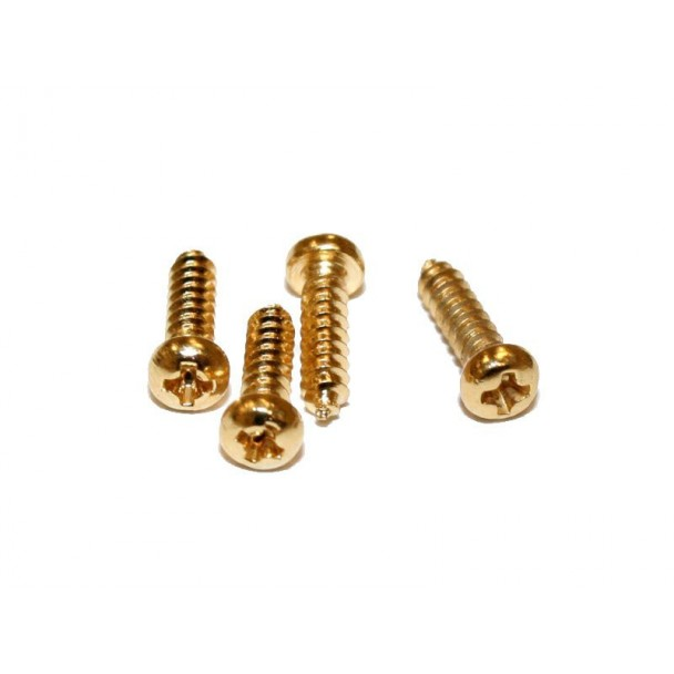 Schaller LK-screw 6019